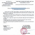 Dịch vụ công văn nhập cảnh, visa cho người nước ngoài làm việc tại Việt Nam và khách sạn cách ly